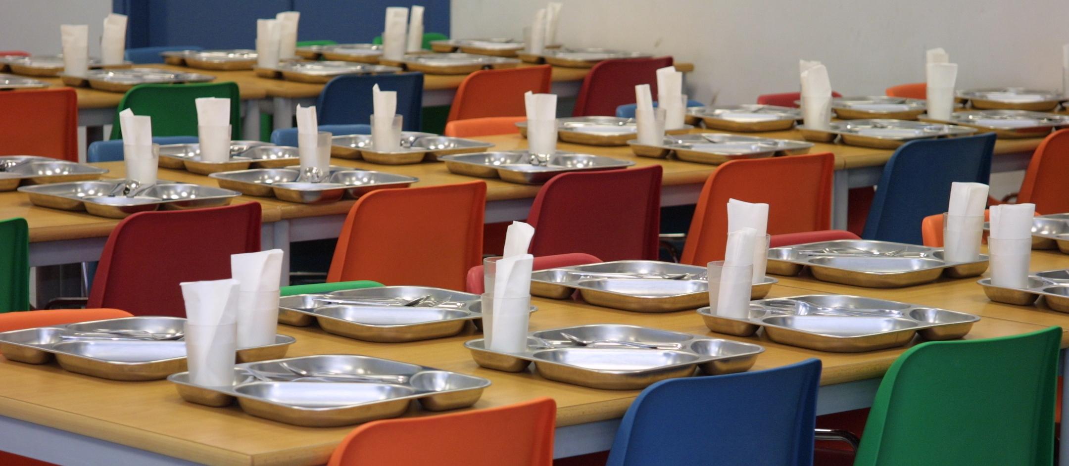 El comedor escolar como campo de batalla alimentando otros modelos - Proyecto de comedor escolar ...