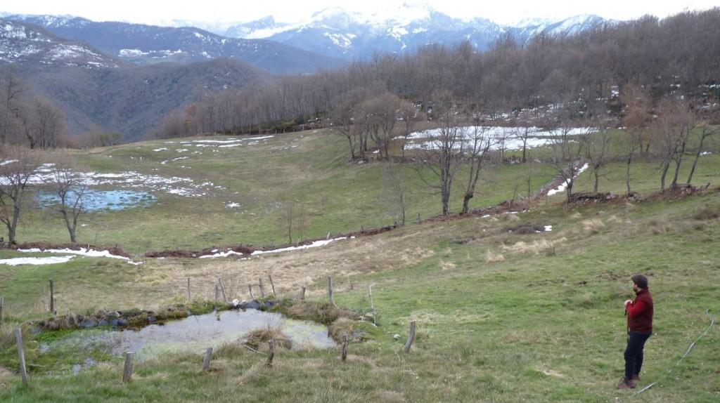 campamento-cantabria